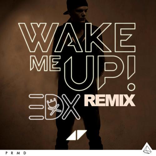 Edx remixes avicii s quot wake me up quot for le7els dance rebels